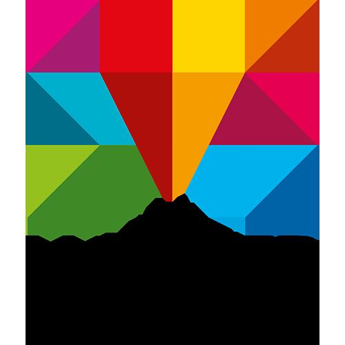 codecentric Mainzer Stadtwerke Success Story - Logo