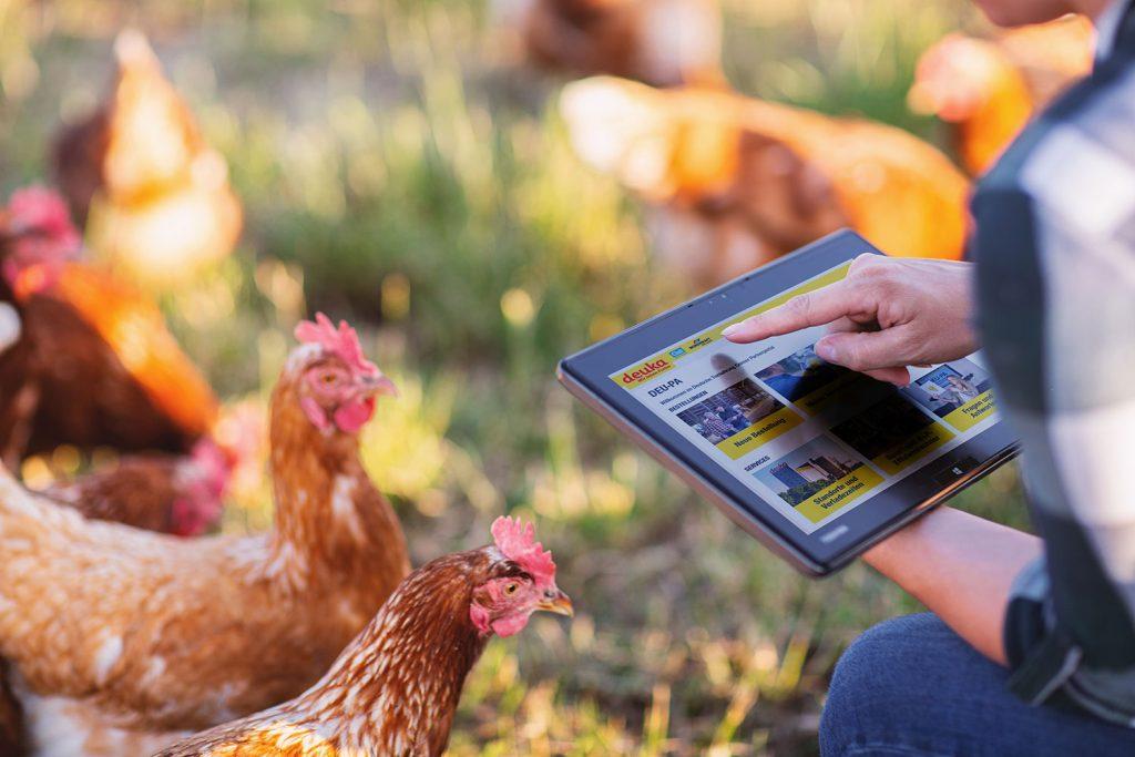 DEUPA App im Hühnerstall